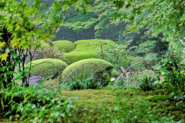 Kyoto - Hakusasonso