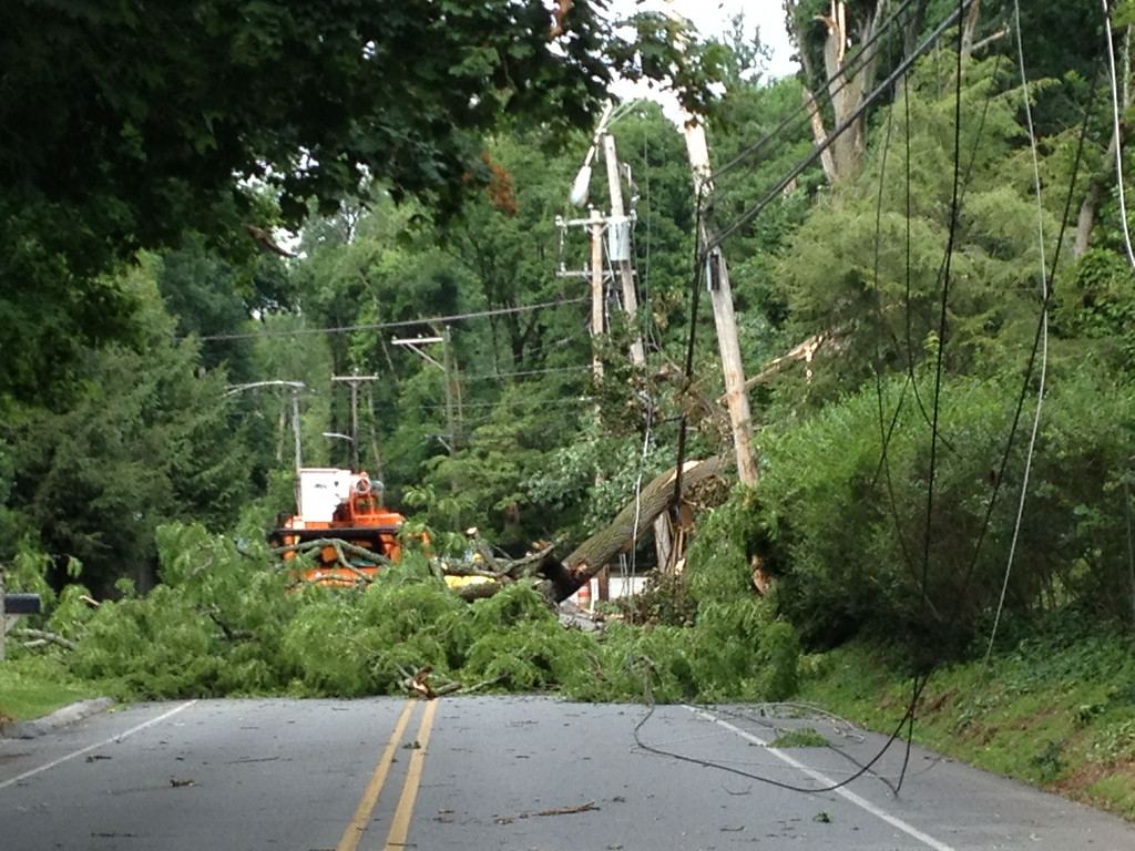 . A downed tree pulled down power line and closed College Avenue in Haverford Township. Photo Pete Bannan
