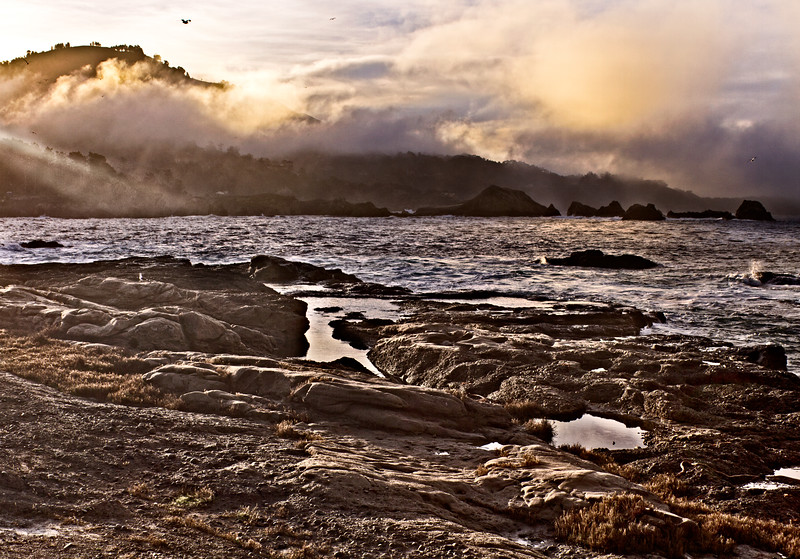 Point Lobos early morning_3399-Edit.jpg