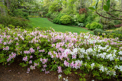 Gibbs Gardens visit in 2021