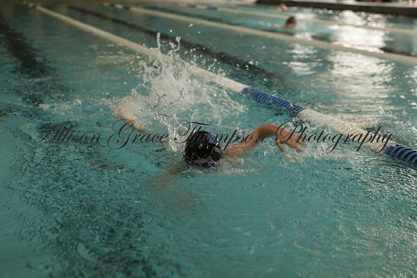 Monroe County Swim Meet - February 2014