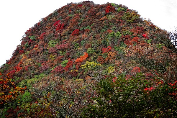 Hakone & Owakudani - 2014/10/23