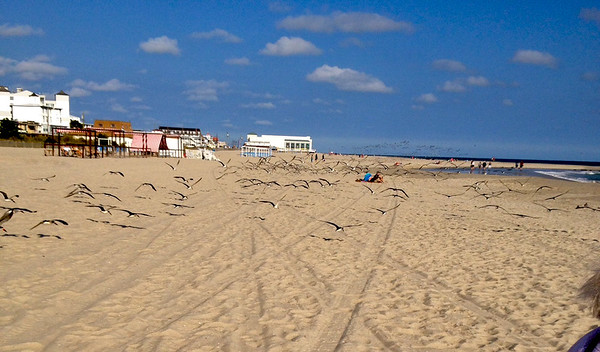 Cape May New Jersey 2014