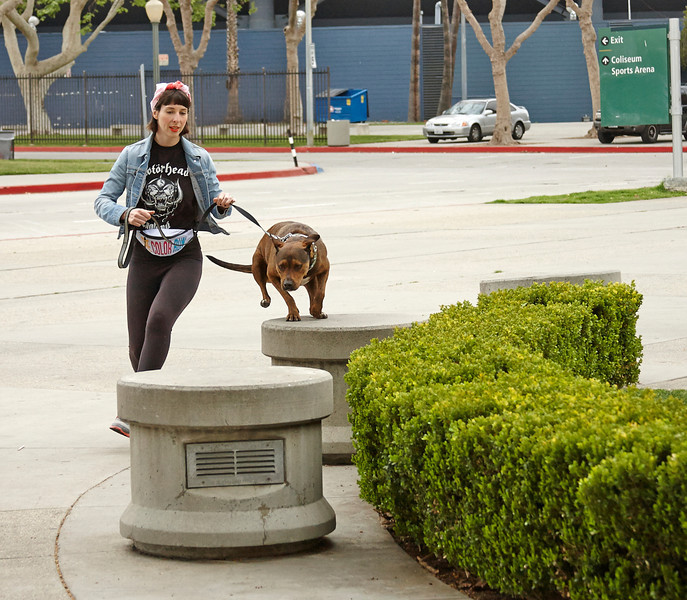 LA Coliseum Pitbull class