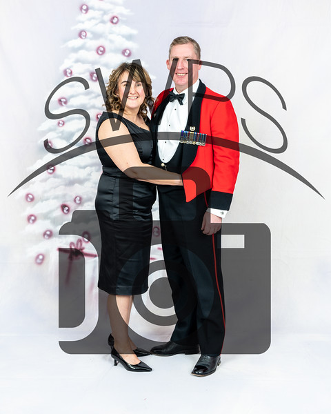 CLR Christmas Ball 19