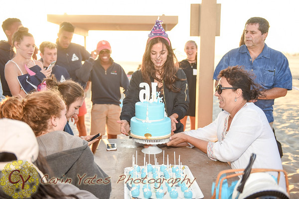 Sophia's Sweet Sixteen