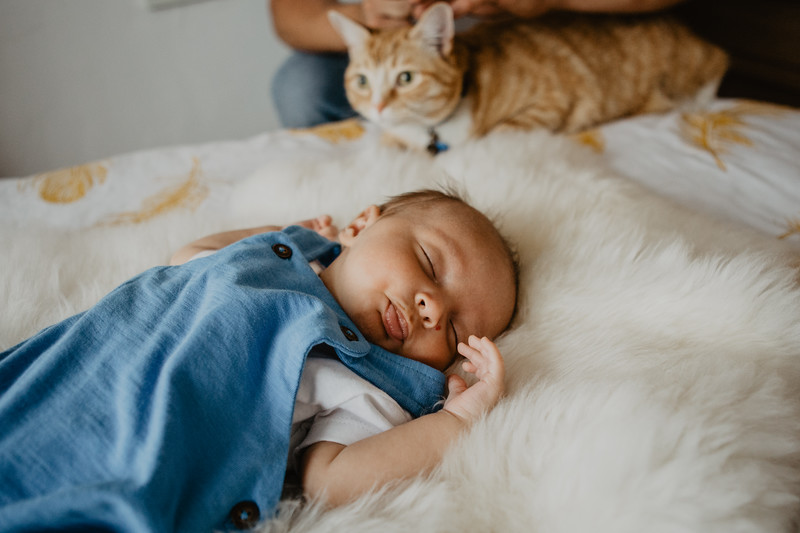 bash-newborn-15.jpg