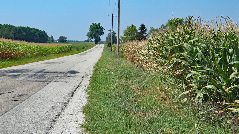 IMG_8336-greenville-corn.jpg