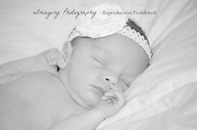 Olivia Newborn Portrait Proof Album