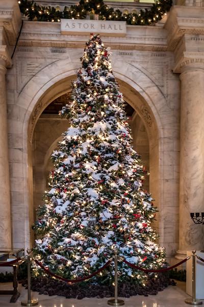 NYC Christmas TourHD (145 of 165).jpg