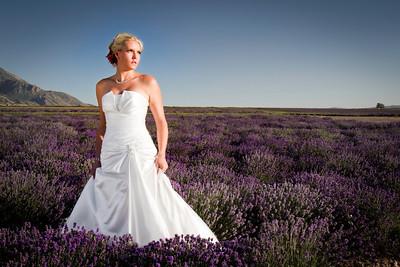 Amy Halford Bridals