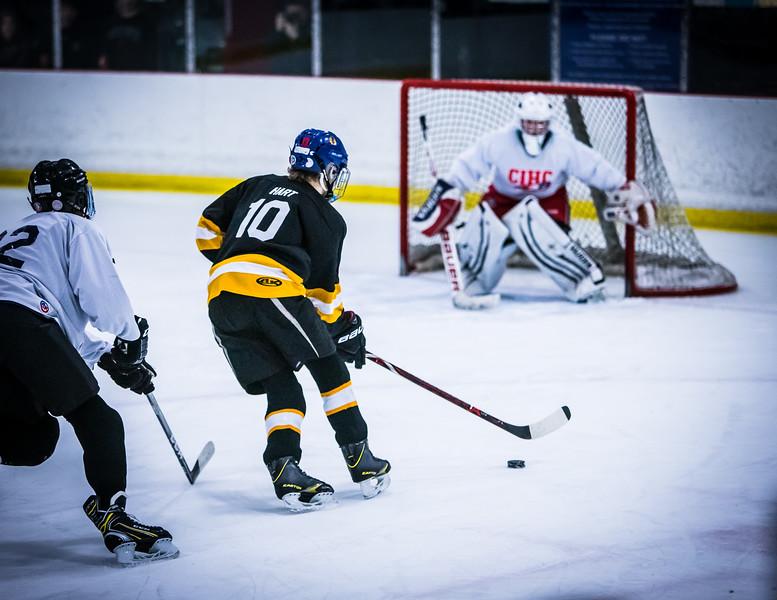 Bruins2-391.jpg