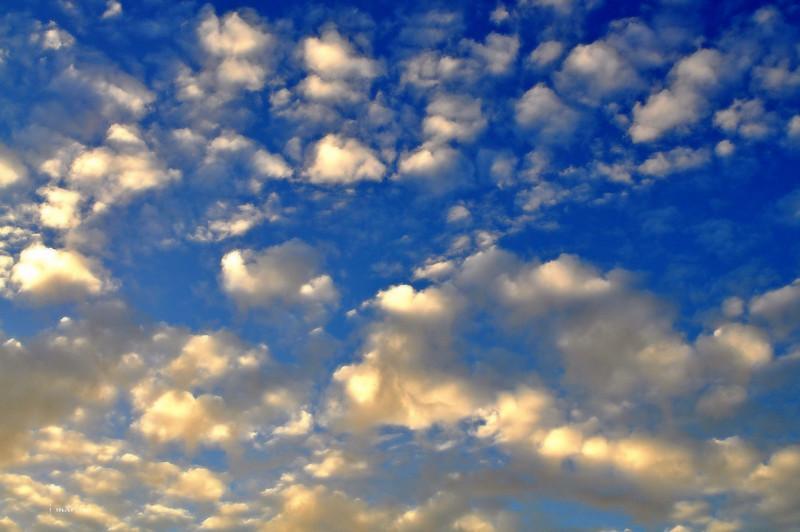 cloud cotton 10-6-2012.jpg