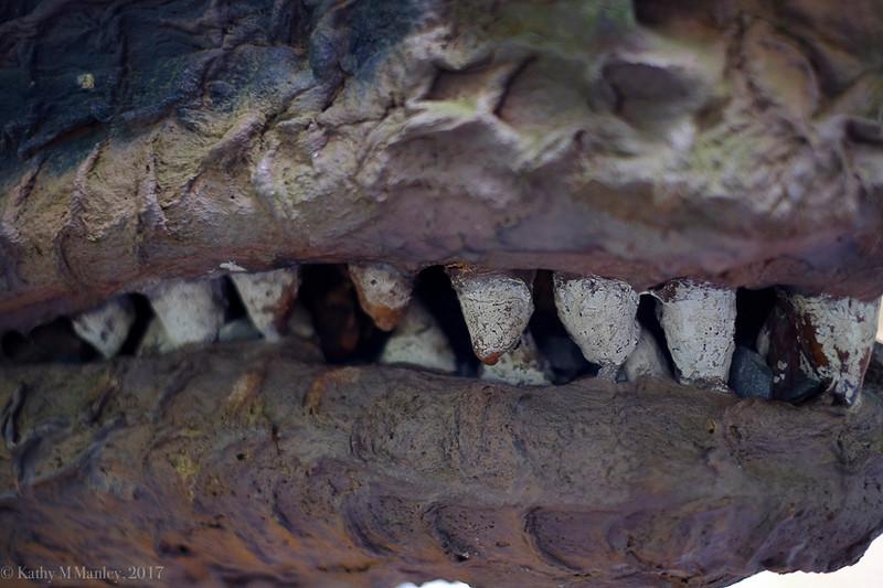 Dinolandss-13.jpg