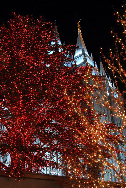 12/11/07 – To get into the Christmas spirit I wanted to go to Temple Square in Salt Lake City. Lisa went with me. It was very cold but I got several good pictures. This was one of my favorites.