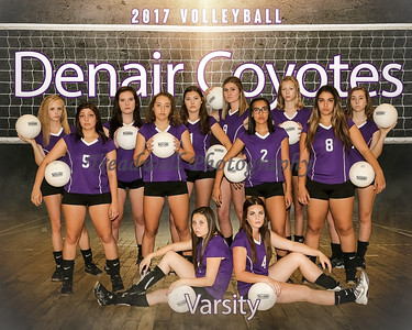 Denair High School Volleyball 2017