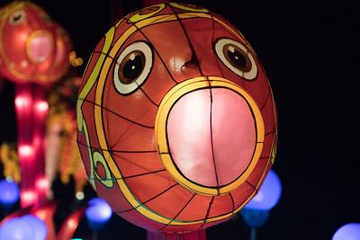 2015 - Chinese Lantern Festival