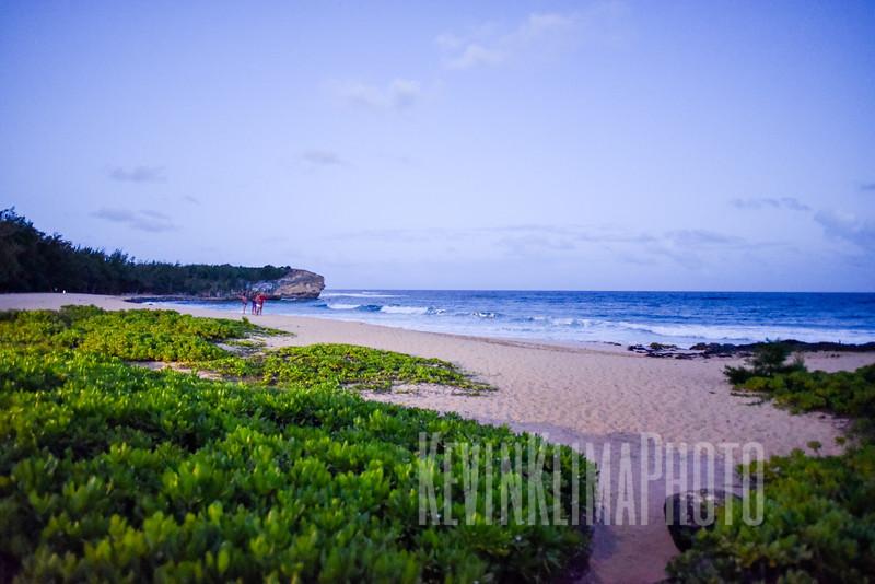 Kauai2017-026.jpg