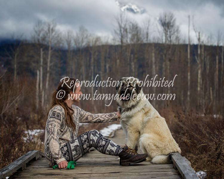 Miro - Pamper Pemby Pets - Spring 2017