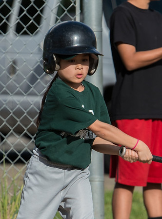DiscoNinja Baseball 052614