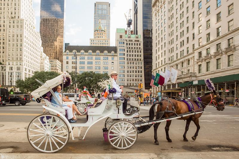 Central Park Wedding - Beth & Nancy-154.jpg