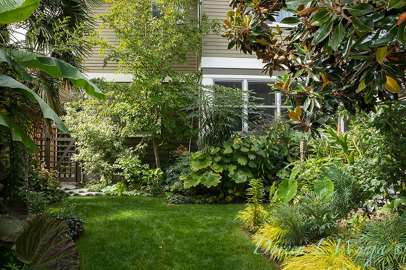 Lisa Bauer - designer's garden_1297.jpg