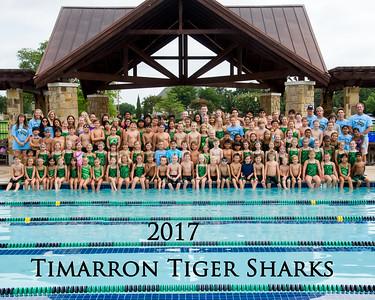 Tiger Sharks 2017