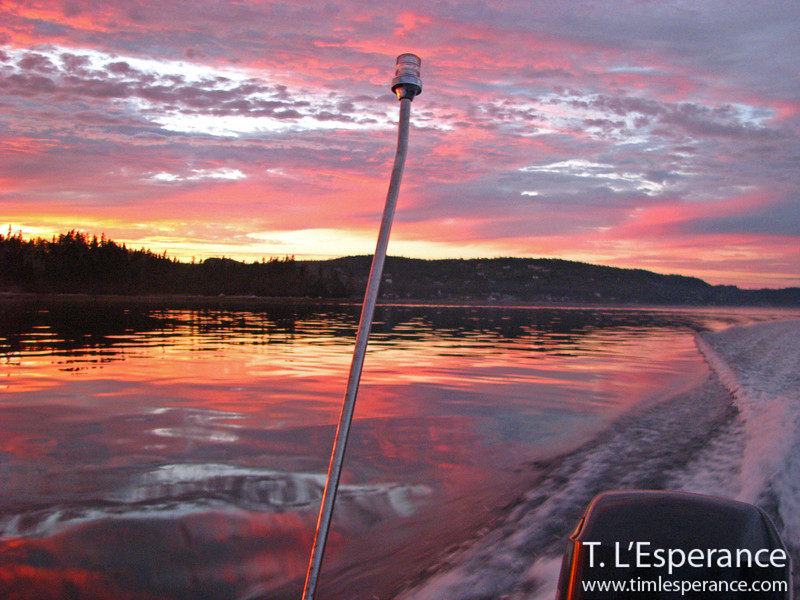 Pink sky reflection... perfect night on the water!