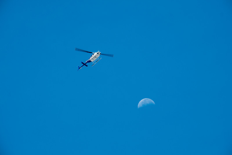 Chopper and Moon F6326.jpg