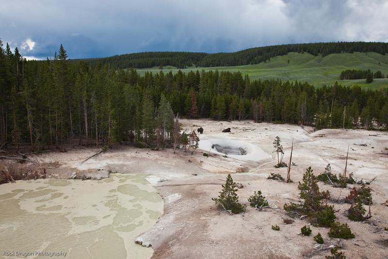 Yellowstone-79.jpg