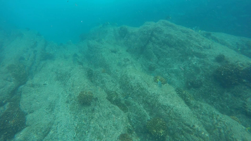 Snorkeling 2.MP4
