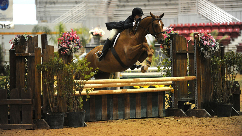 Horse show (24).jpg