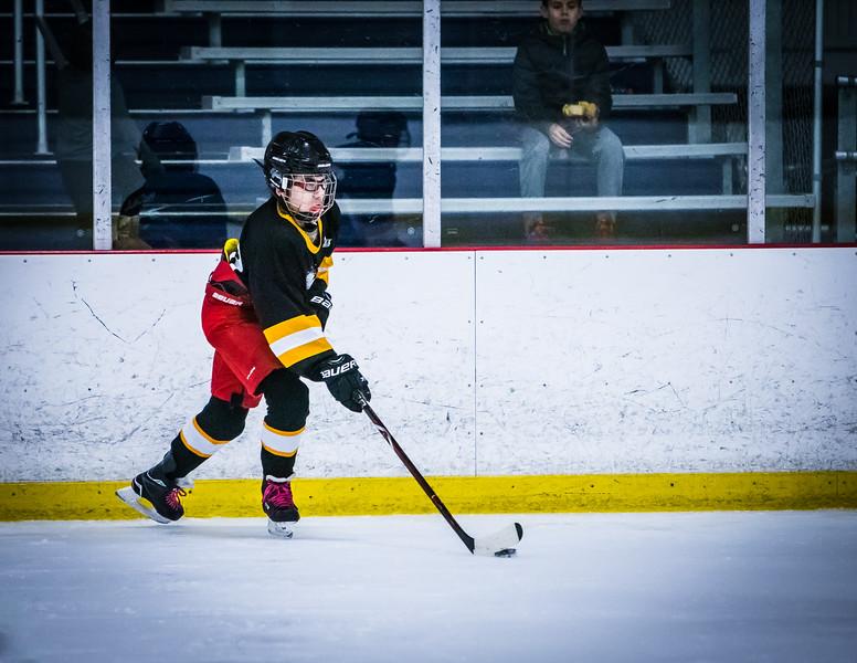 Bruins2-242.jpg