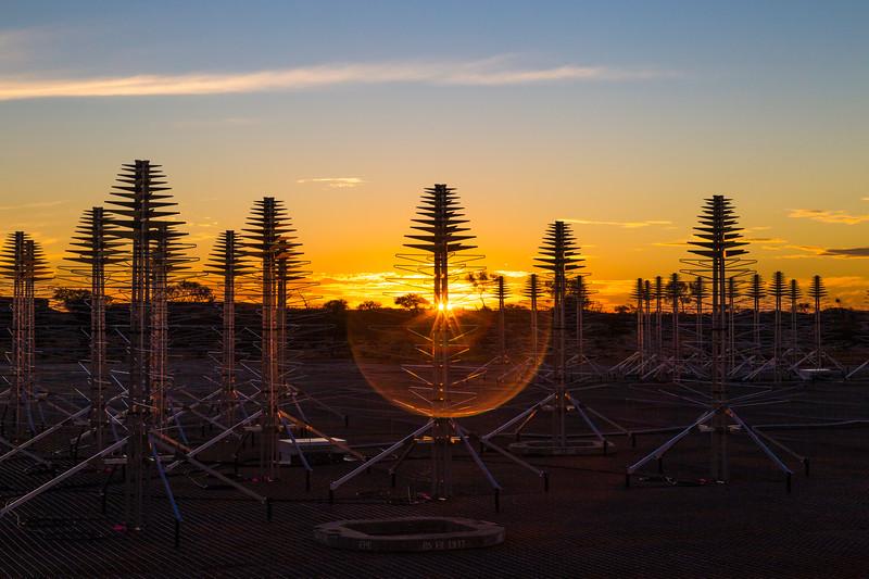SKALA antennas at sunset.
