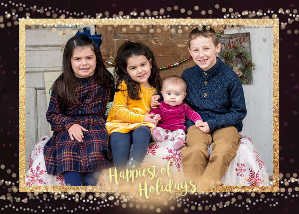 Melissa and Katys family 2020