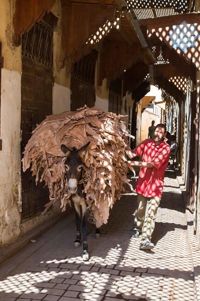 160923-072357-Morocco-9511.jpg