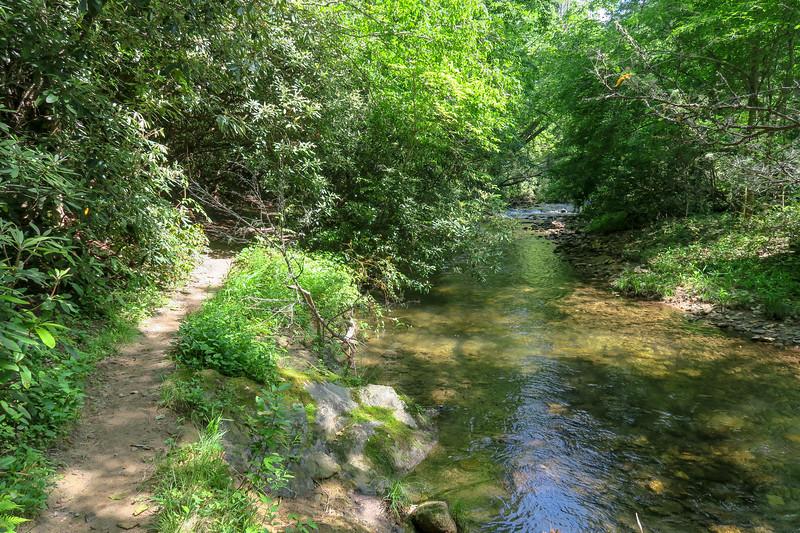 Bradley Creek Trail -- 2,350'