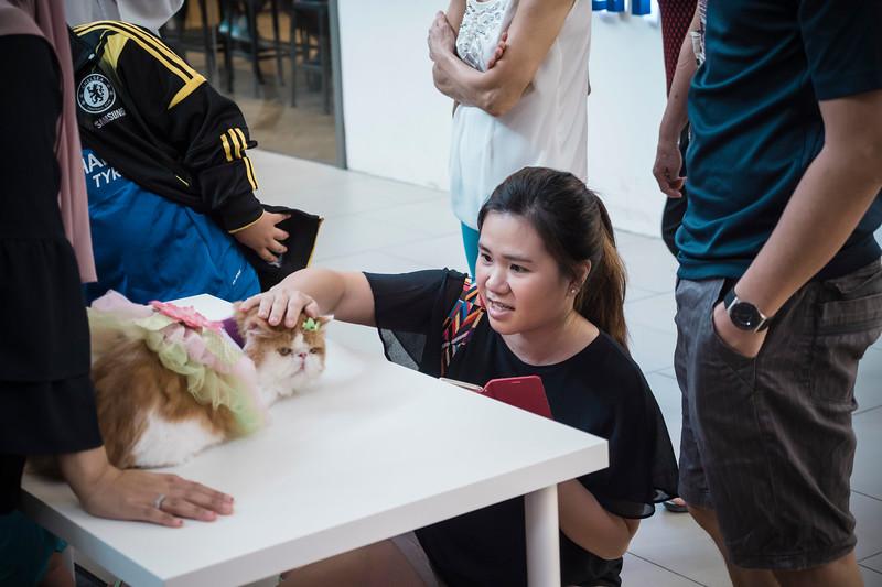 VividSnaps-The-Seletar-Mall-CAT-Dress-Up-Contest-051.jpg