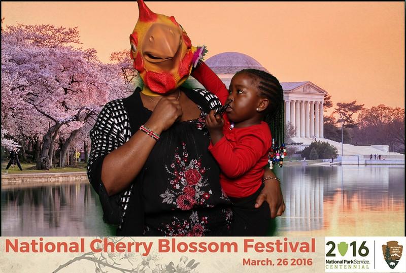 Boothie-NPS-CherryBlossom- (442).jpg
