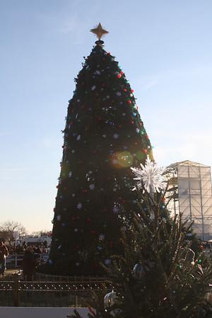 2010 National Christmas Tree Lighting, Washington, DC
