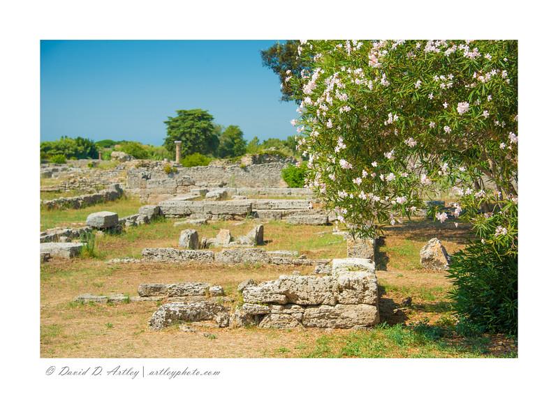 Ruins, Paestum Arhaeological Park, Italy