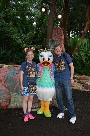 Disney August 2018 Professional