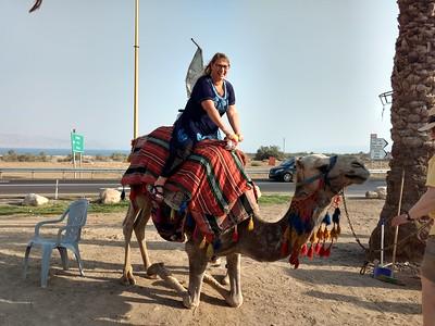 Camel Rides 2018