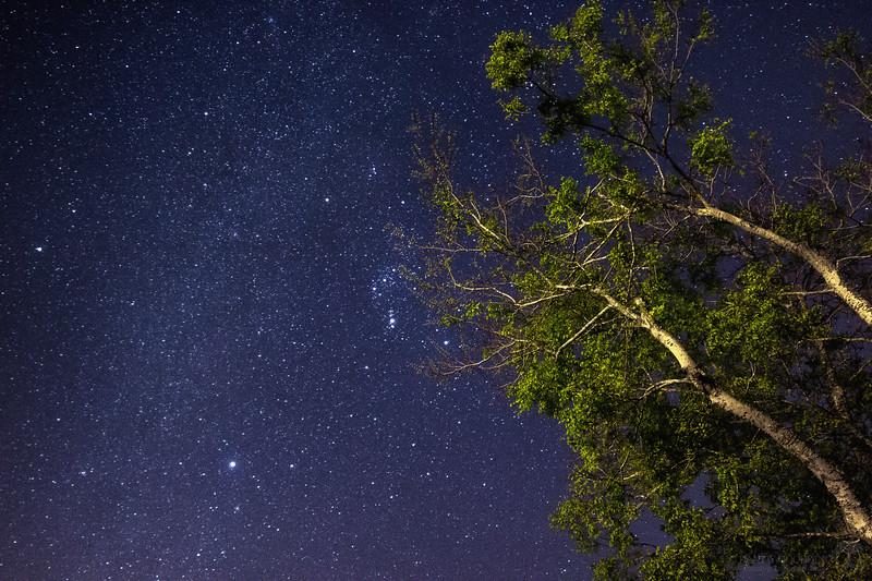 Stars over St. Johns River