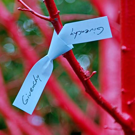 "Jardins ""Toi & Moi : une rencontre"""