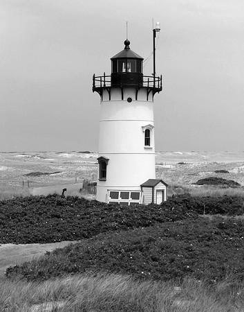 2005; Cape Cod