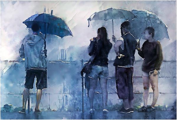 Umbrellas Collecion