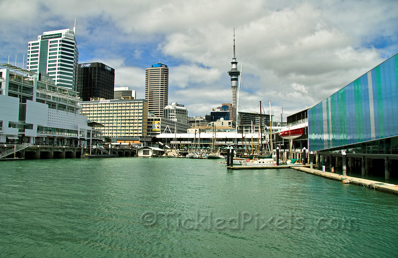 Waterfront Cafe and the Sky Tower