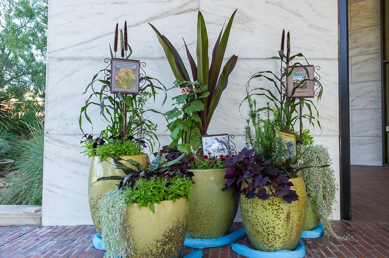 October 02, 2015-Stark Muesum  'Wicked Plants'-LAT_6850.jpg