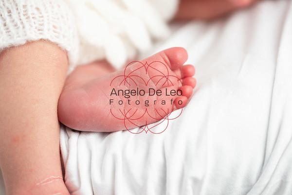 Nicolò Newborn
